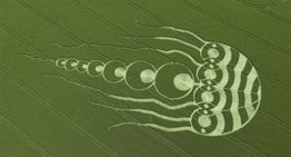 Crop Circle Plasma Technology and The Suppression of Patty Greer's Films