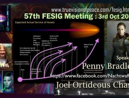 FESIG 57th Meeting: SSP Tech with Penny Bradley & Joel Orthideous Chase