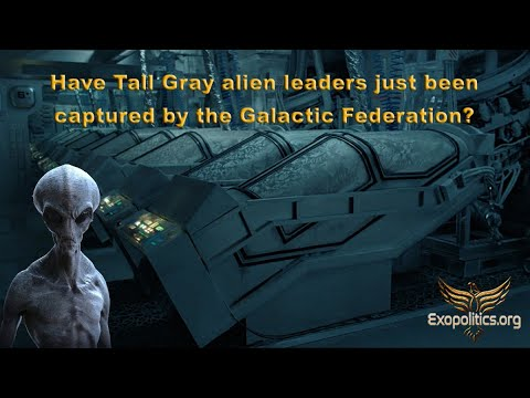 Have Tall Gray alien leaders just been captured by the Galactic Federation?